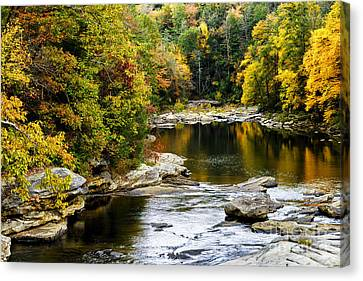 Audra's Autumn Splendor Canvas Print by Thomas R Fletcher