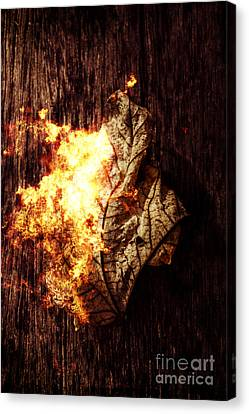 August Burns Red Canvas Print