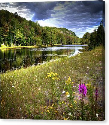 Canvas Print featuring the photograph August Flowers On The Pond by David Patterson