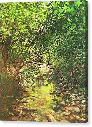August Shade Canvas Print by David Bottini