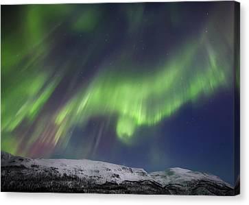 Aurora Borealis Over Blafjellet Canvas Print by Arild Heitmann