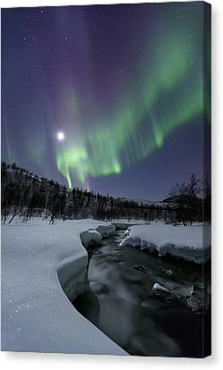 Aurora Borealis Over The Blafjellelva Canvas Print by Arild Heitmann