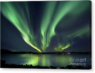 No People Canvas Print - Aurora Borealis Over Tjeldsundet by Arild Heitmann