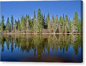 Canvas Print featuring the photograph Ausable Reflections 1768 by Michael Peychich