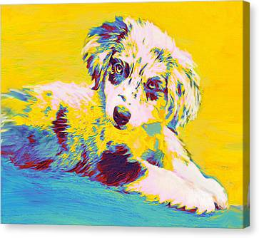 Aussie Puppy-yellow Canvas Print by Jane Schnetlage
