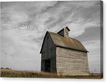Rural Landscapes Canvas Print - Austerity by Dylan Punke