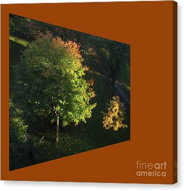 Autumn Symphony In Major Tree And Minor Tree Canvas Print by Dominique Fortier