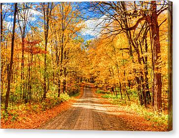 Autum Canvas Print by RC Pics