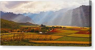 Autumn - Hex-river Valley Canvas Print by Basie Van Zyl