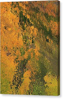 Autumn Abstract Number 3 Canvas Print