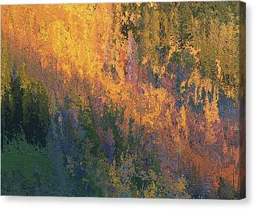 Reds Of Autumn Canvas Print - Autumn Abstract Number 4 by Dan Sproul