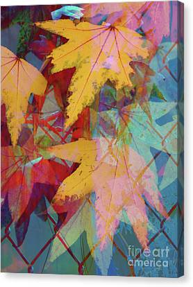 Autumn Abstract Canvas Print by Robert Ball