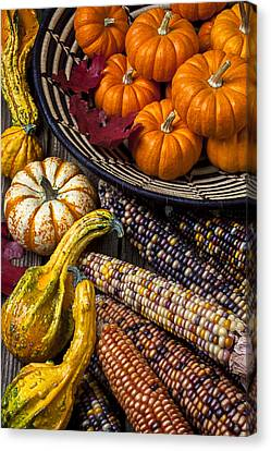 Autumn Abundance Canvas Print by Garry Gay