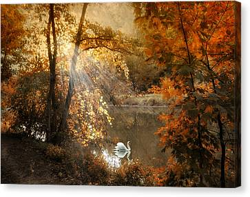 Canvas Print featuring the photograph Autumn Afterglow by Jessica Jenney