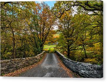 Autumn Ambiance Canvas Print by Adrian Evans