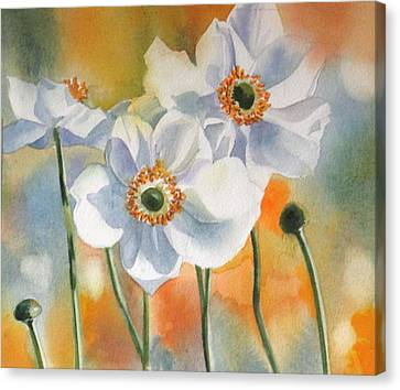 Autumn Anemone Canvas Print by Alfred Ng