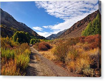 Canvas Print featuring the photograph Autumn Arrives In Bishop by Dung Ma