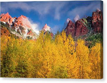 Canvas Print featuring the photograph Autumn Aspens by Andrew Soundarajan