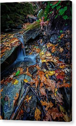 Autumn At A Mountain Stream Canvas Print by Rick Berk