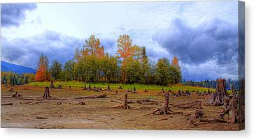 Autumn At Alder Lake Canvas Print