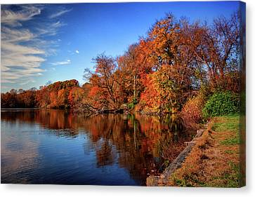 Autumn At Coursey Pond In Frederica Canvas Print