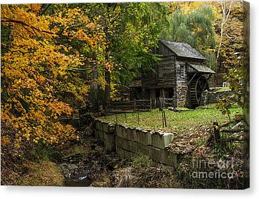 Autumn At Cuttalossa Farm IIi Canvas Print