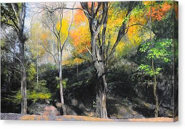 Autumn At Loggerheads Canvas Print