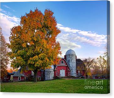Autumn At Lusscroft Farm Canvas Print by Mark Miller