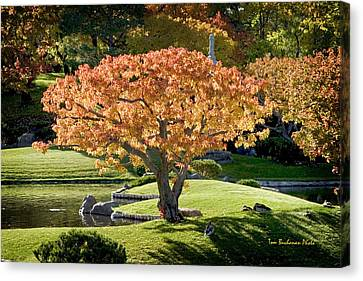 Autumn At Nikka Yuko Canvas Print by Tom Buchanan