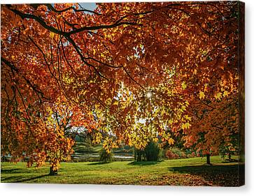 Autumn At The In Forest Park St Louis Missouri Canvas Print by Garry McMichael