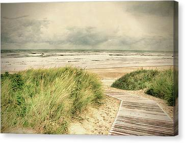 Autumn At The Sea Canvas Print by Nicole Frischlich