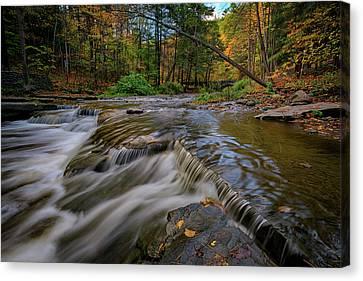 Autumn At Wolf Creek Canvas Print by Rick Berk