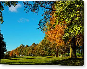 Autumn At World's End Canvas Print