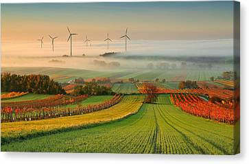 Autumn Atmosphere In Vineyards Canvas Print by Matej Kovac