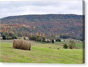 Autumn Bales Canvas Print by Jan Amiss Photography