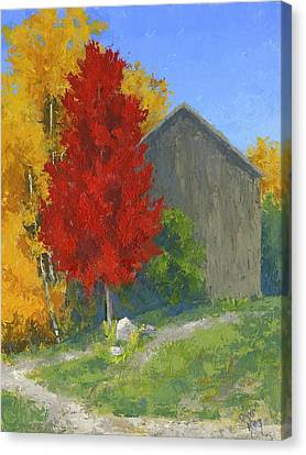 Wood Shed Canvas Print - Autumn Barn by David King