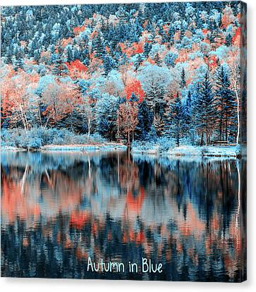 Autumn Beauty In Blue Canvas Print by Black Brook Photography