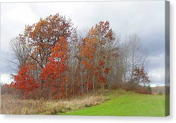 Canvas Print featuring the photograph Autumn Beauty by Jim Vance