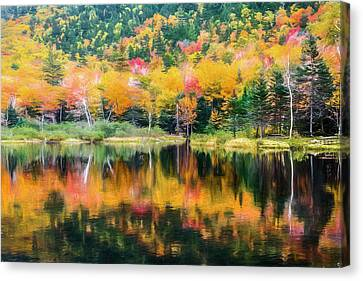 Autumn Beauty Painted Canvas Print by Black Brook Photography