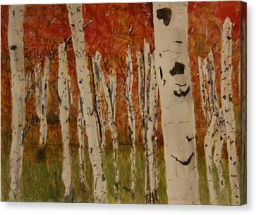 Autumn Birch Forest Canvas Print by Betty-Anne McDonald