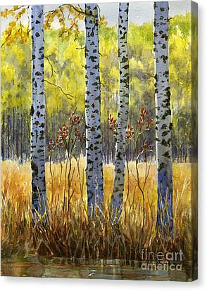 Autumn Birch Trees In Shadow Canvas Print by Sharon Freeman