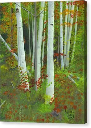 Autumn Birches Canvas Print by Laurel Ellis