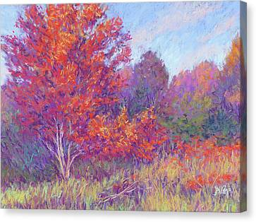 Autumn Blaze Canvas Print by Michael Camp