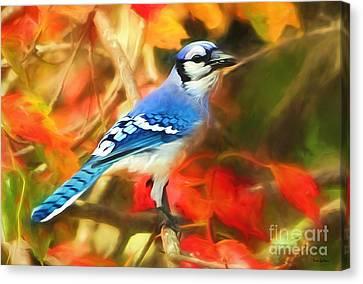 Autumn Blue Jay Canvas Print