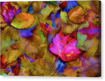 Autumn Breeze Canvas Print