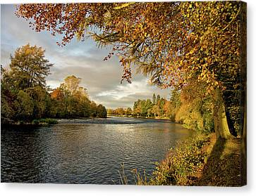 Autumn By The River Ness Canvas Print by Jacqi Elmslie