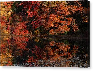 Autumn Canvas Canvas Print by Juergen Roth