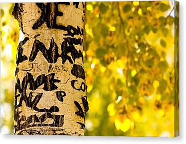 Autumn Carvings Canvas Print by James BO  Insogna