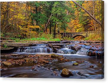 Autumn Cascades Canvas Print by Mark Papke