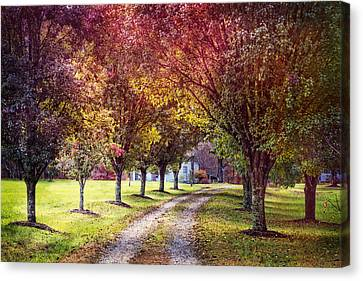Smokey Mountain Drive Canvas Print - Autumn Charm by Debra and Dave Vanderlaan